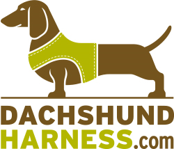 Dachshund Harness