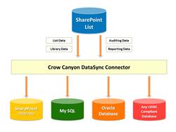 Crow Canyon DataSync tool
