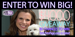 Enter to Win Big at PetsPage.com!