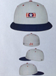 NeverGiveUp26 Logo-Hat