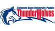 Colorado State-Pueblo to Add New Shaw Sports Turf Field with the...