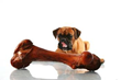 Healthy Foods For Dogs To Eat at Home, a New Report on Vkool.com,...