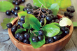 Native to the US, Aronia berries lead all other berries in anthocyanin and proanthocyanin content, two flavonoids that have demonstrated a wide range of potential benefits including heart health and cancer prevention.