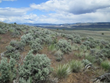 Historic Agreement Signed Today in Eastern Oregon to Benefit Sage...