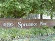 DuPont Spruance Plant