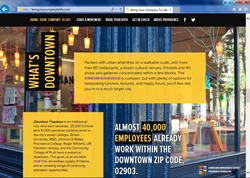 The Bring Your Company to Life campaign website presents facts, figures, testimonials and resources with vivid imagery.