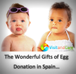VisitandCare.com Lists Spain as Top Destination for Infertile Patients...