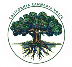 California Cannabis Voice for fair and reasonable cannabis regulation and licensing