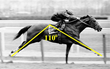 Secretariat 110 Degree Stride Angle