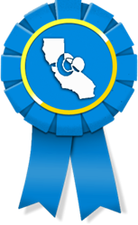 Web Design Firms in SF: Badge