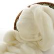 Soft Corriedale Wool Roving