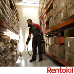 pest control, rentokil, rentokil pest control, pest disinfection service, pest disinfection, pest infestation, pest problems, pest control services, pest control company