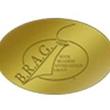 B.R.A.G. Medallion