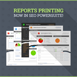 SEO PowerSuite reports