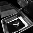 Platinum Photography Printing Process with photographer Cy DeCosse and printer Keith Taylor