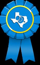 Top Houston Web Design Firms