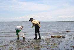 """Maritime Aquarium """"Sound Scientists"""" summer camp"""
