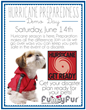 Funny Fur To Host Hurricane Preparedness Event For Pet Owners