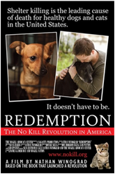 no kill documentary, no kill shelter documentary