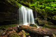 Exploring The Great Smoky Mountains National Park Named '#1 Thing To...