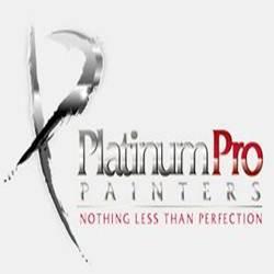 Platinum Pro Painters