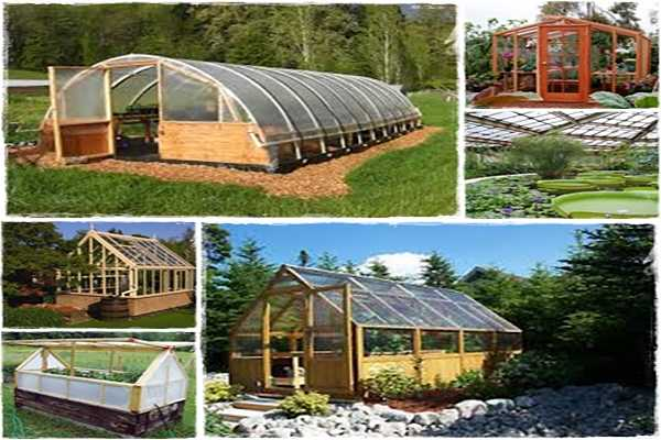 Wood Shed Vs Resin Shed Building A Greenhouse Plans