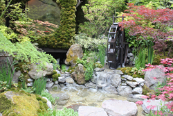 RHS Chelsea 2014 Togenkyo - A Paradise on Earth - Designer Kazuyuki Ishihara