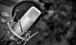 Self-Published Authors Can Now Hire Voice Actors to Turn Novels Into...