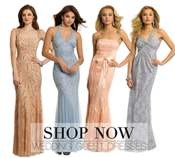 Shop Wedding Guest Dresses for 2014