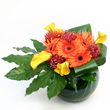 florists london, flowers delivery london, flowers delivery london, flower shops in london, flower delivery in london, flower shop london, send flowers, buy flowers online, gift shop, gift delivery, london gifts, london flowers, online flowers