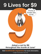 National '9 Lives for $9' Cat Adoption Promotion This June: Best...
