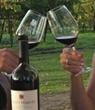 Toasting 10 years of Scott Harvey Wines