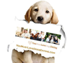 Newly Unveiled Site, YouMustLoveDogsDating.com, Tailored for Singles with Canine Loved Ones