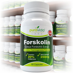PuraVida Labs - Forskolin Supplement