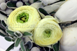 Send flowers online london with top quality london flowers same day delivery company – top flower shops in london. Flower delivery in london by flower shop london UK and london florist. buy flowers online london with top quality services.