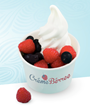 New Jersey Frozen Yogurt Franchise Launches Just in Time for Summer...