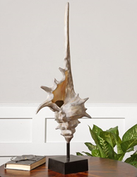 Large Conch Shell From Uttermost 19615