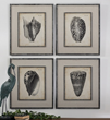 Vintage Diderot Shells Art From Uttermost 51088