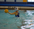 YMCA of Greenwich's Water Polo Teams Dominate at Junior Olympic...