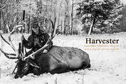 Hunting Silencer
