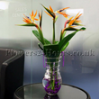 Same day flowers, flower delivery london and the UK. London flower delivery. London flower delivery same day by flowers24hours.co.uk