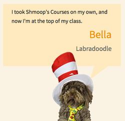Shmoop Online Courses
