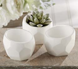 White Plaster Planter