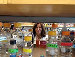 Researcher Angie Gelli