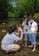 West Virginia State Park naturalists provide guided hikes and programming through the summer.