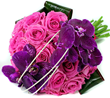 Jolanta: Pink flowers delivery London UK - Flower delivery shop and top quality fower delivery service. Flower delivery UK next day by London florist.