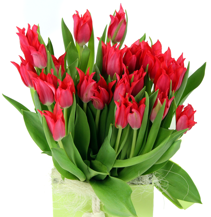 Flower Delivery Us Send Flowers To America From Uk With Interflora