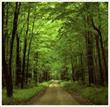 Ecology @ EurekaMag.com
