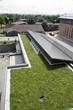 Kipling Acres LiveRoof Aerial