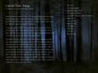 "Album Artwork for ""Certain Dark Things"""